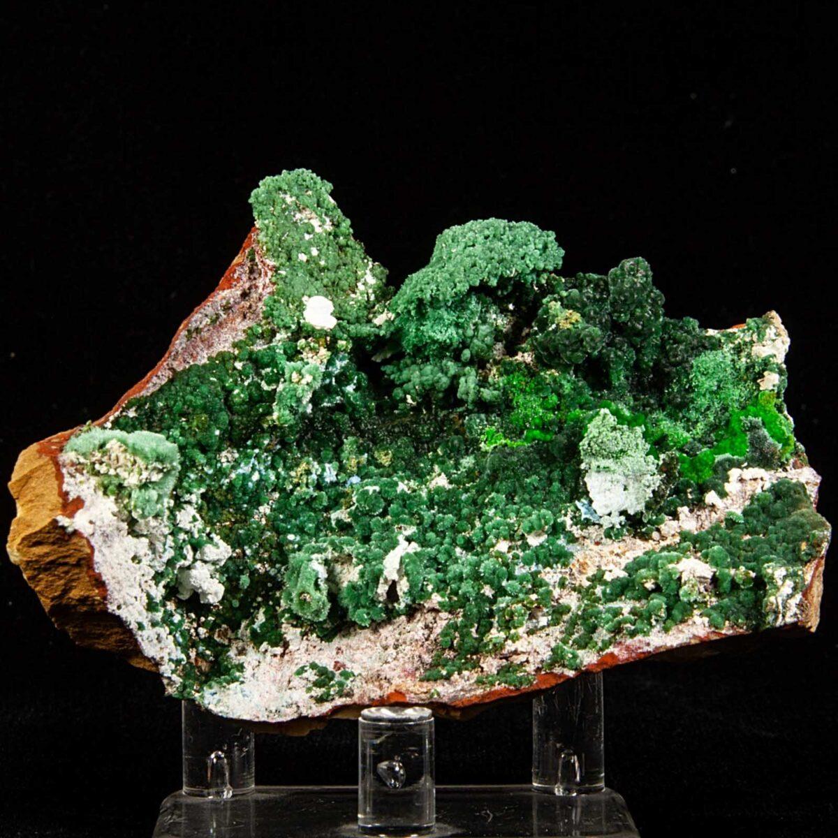 Olivenite and Arsenocrandallite